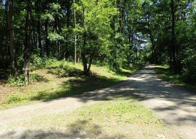 budd-road-invitation-to-explore